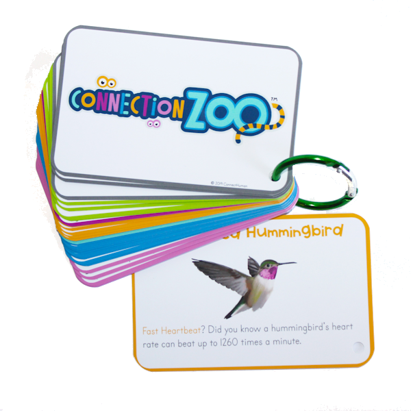 Connection Zoo Product - Cards Only