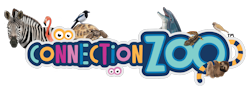 Connection Zoo
